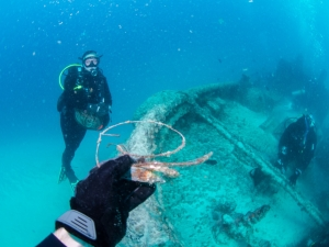 Get a Wreck certification with Go Dive