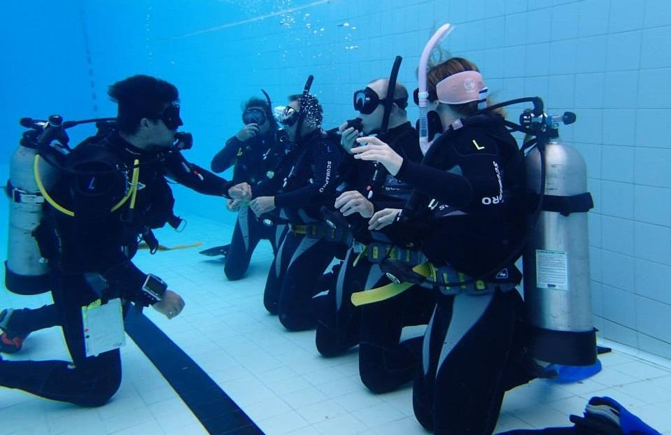 Scuba Service Centre Brisbane - Scuba Dive Brisbane - Go